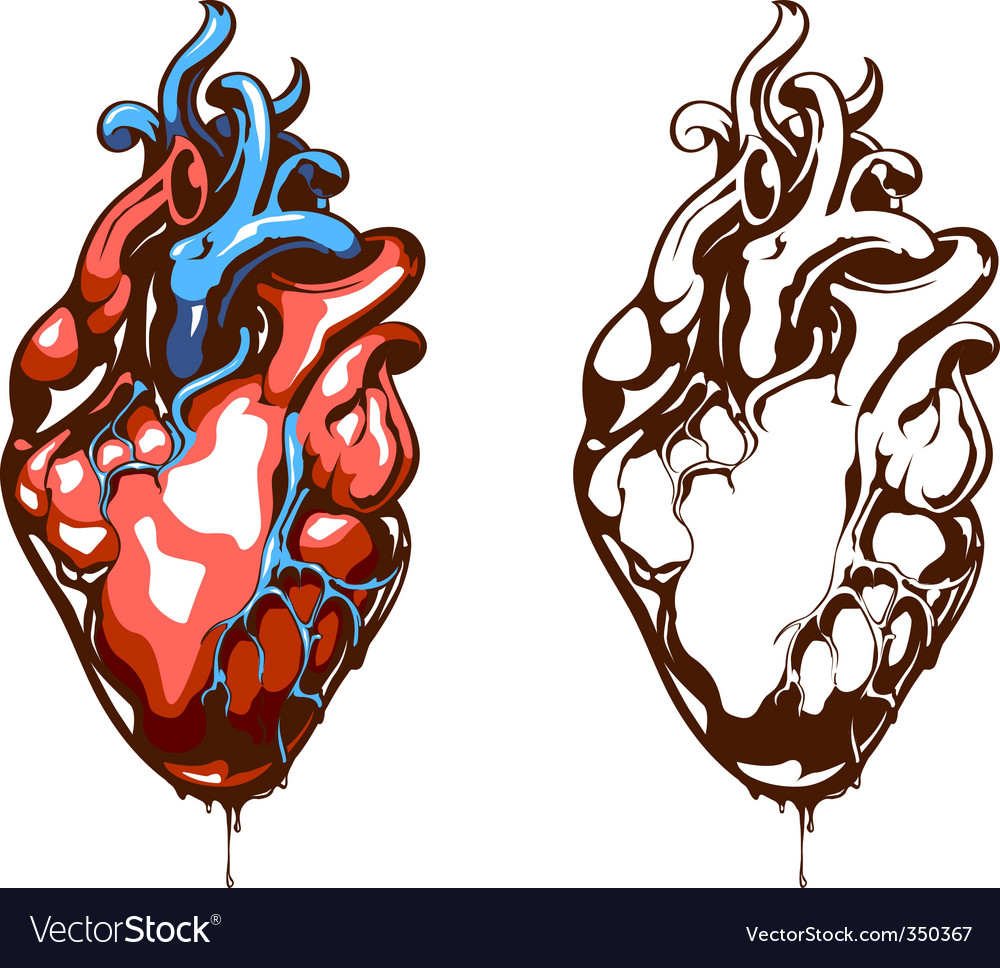 Vector heart sketch