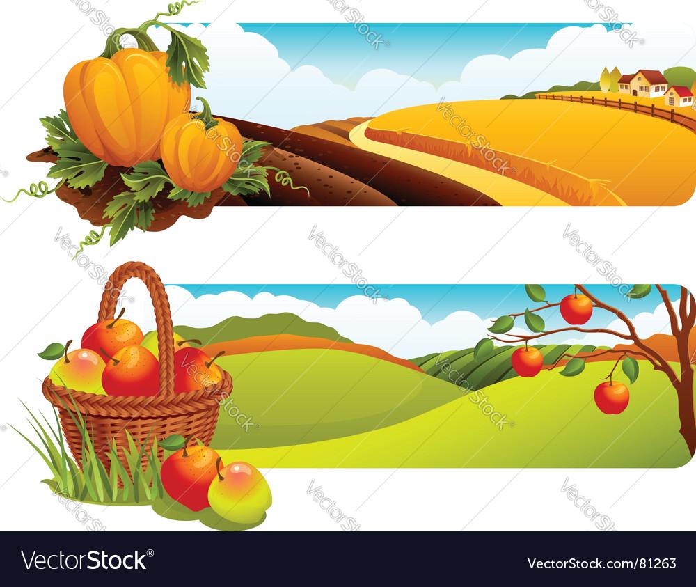 Harvest vector