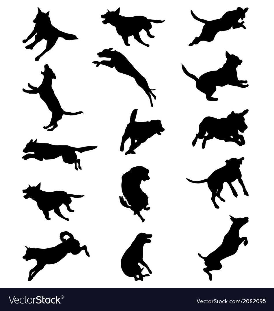 Dog jumping silhouette