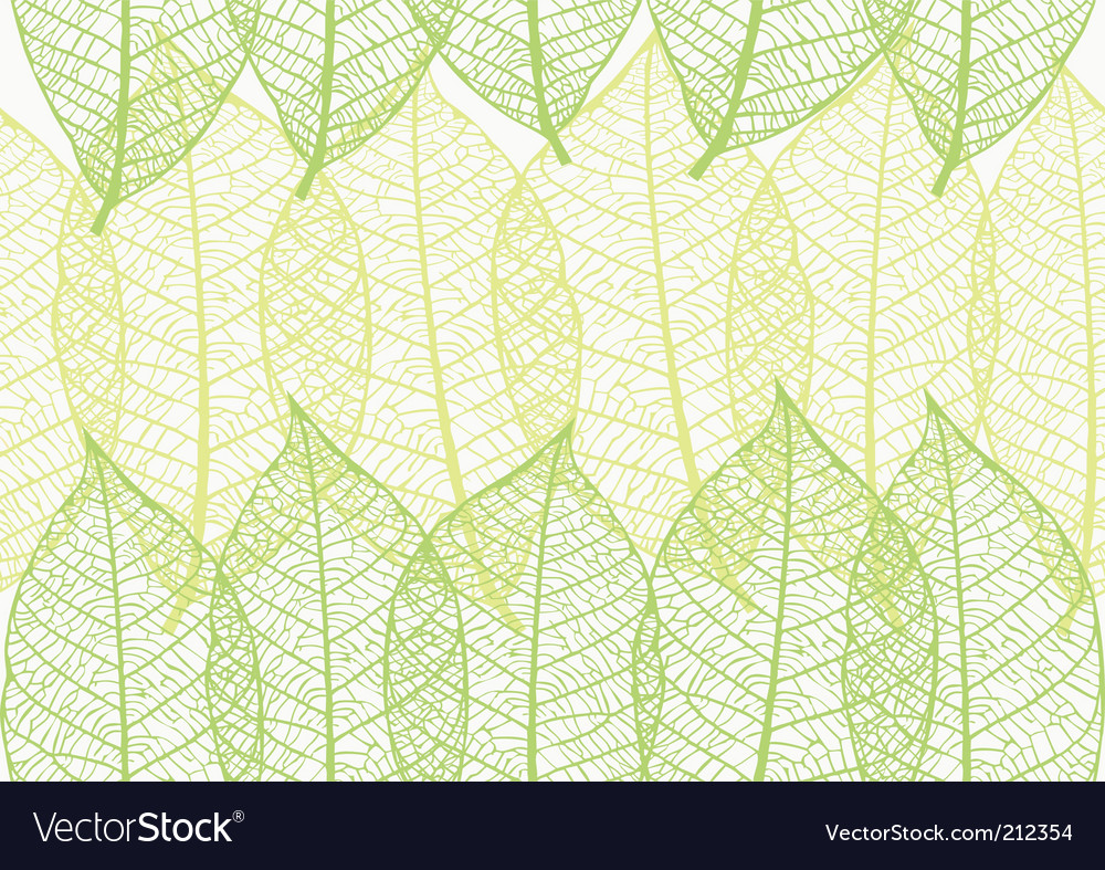 Captivating leaves vector pictures