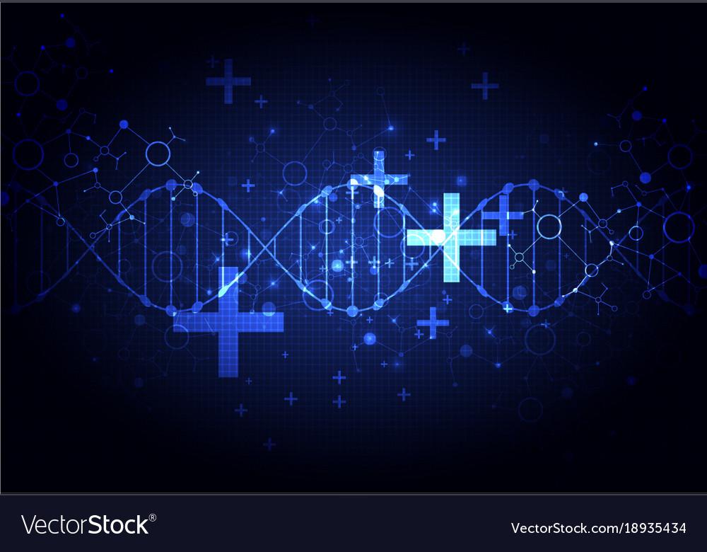 Vector molecular biology  YouTube