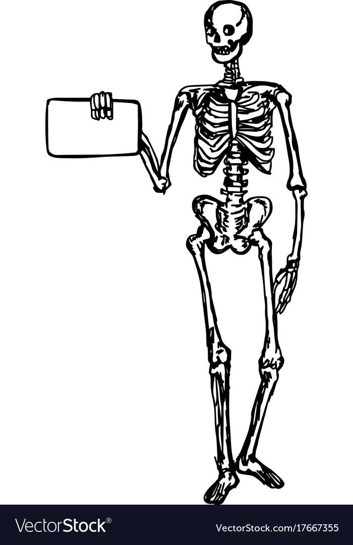 Human Skeleton Hand Holding Crazywidowfo