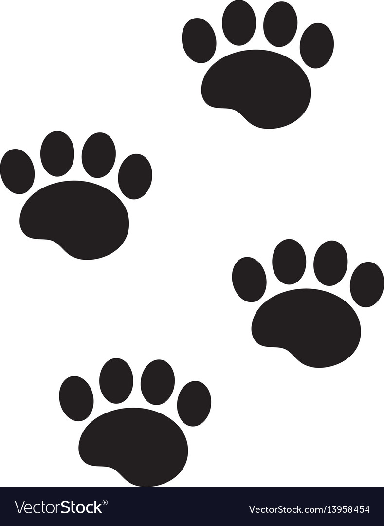 Dog footprint vector
