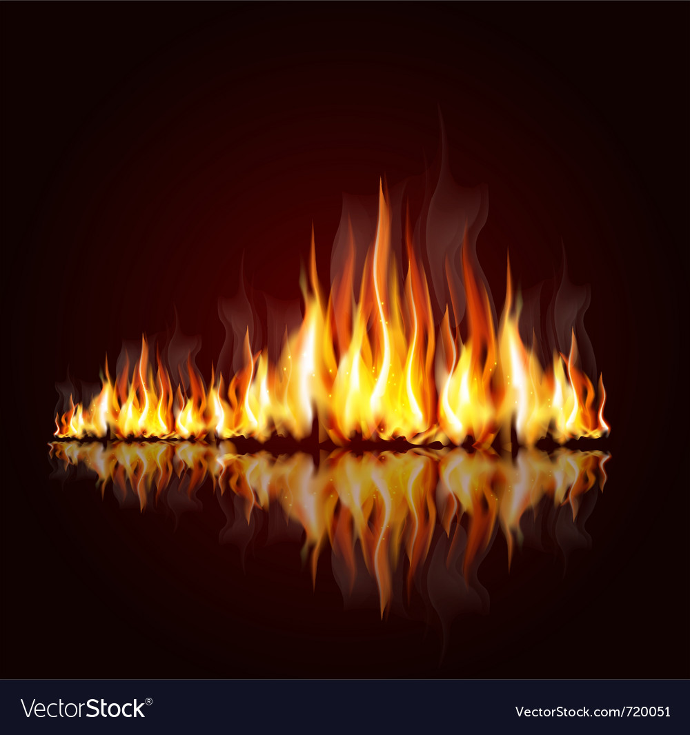 Burning flame vector