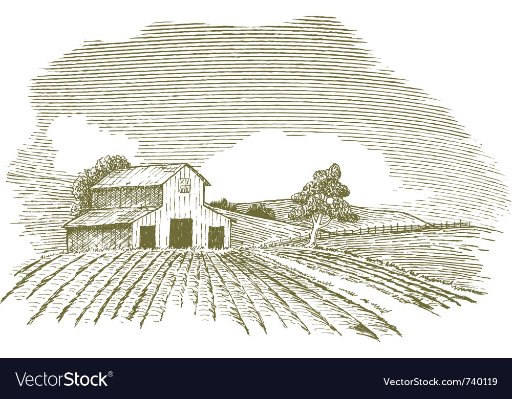 Farm scene landscape with barn vector
