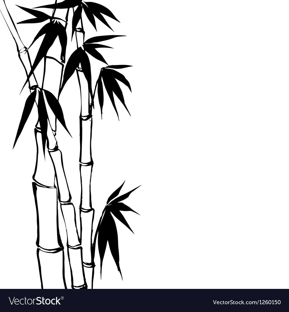 Bamboo vector