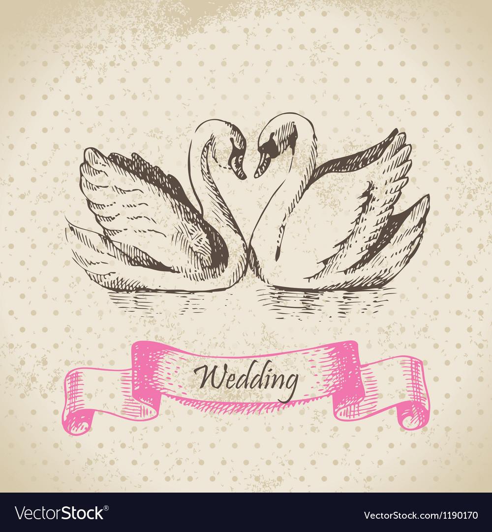 Swans wedding hand drawn vector
