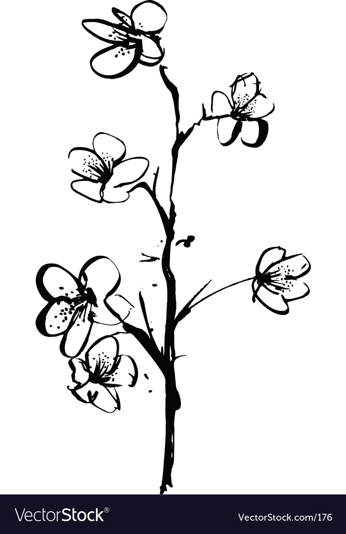 Free cherry blossom ink illustration vector