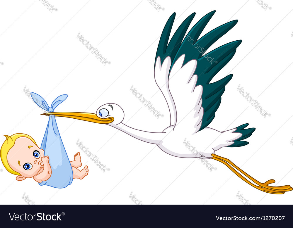 Stork and baby boy vector