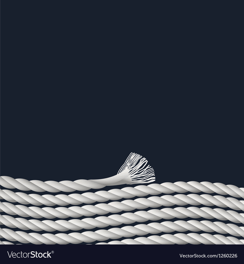 Stylish background with marine rope vector