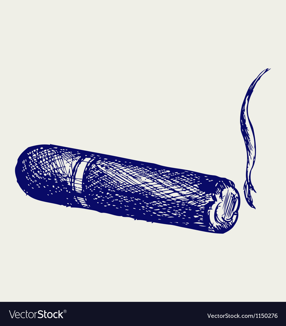 Havana cigar burned vector