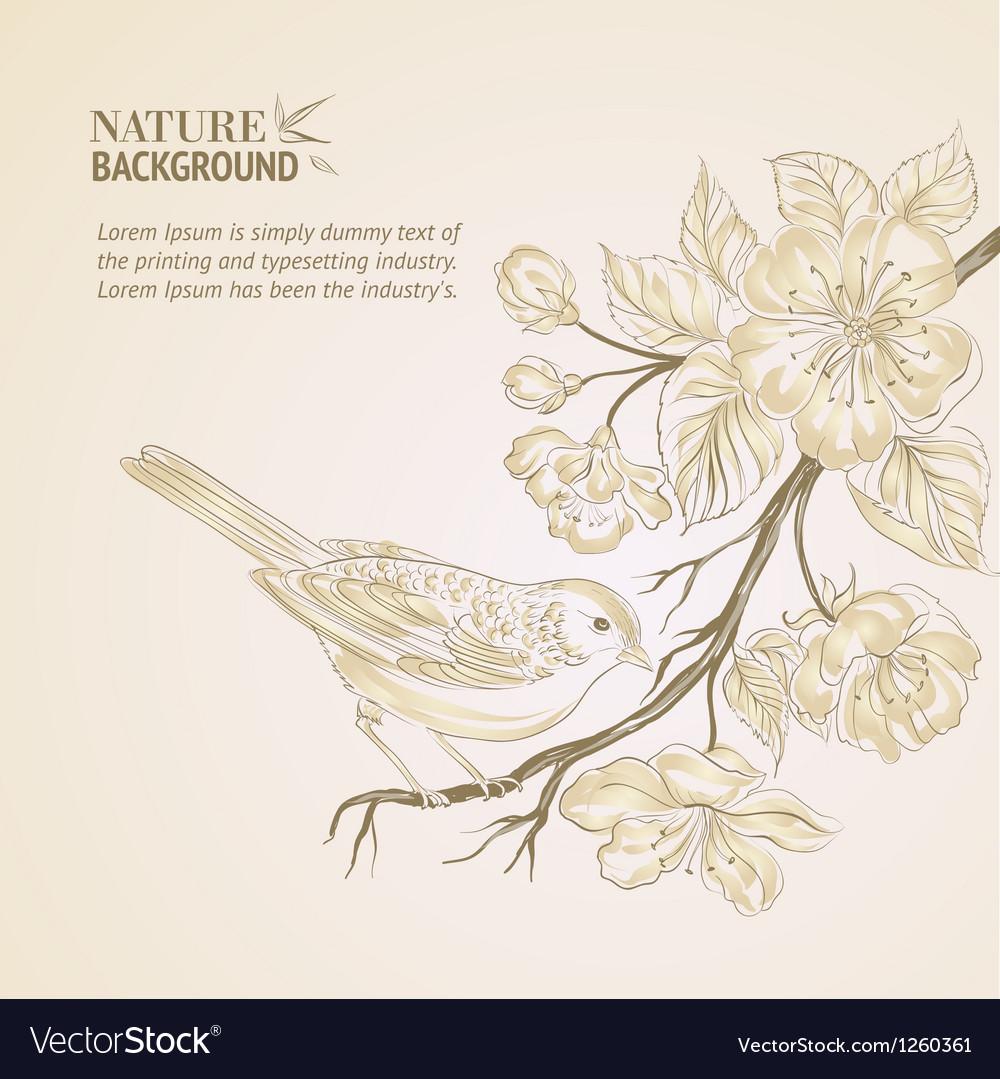 Hand drawn bird on sacura branch vector