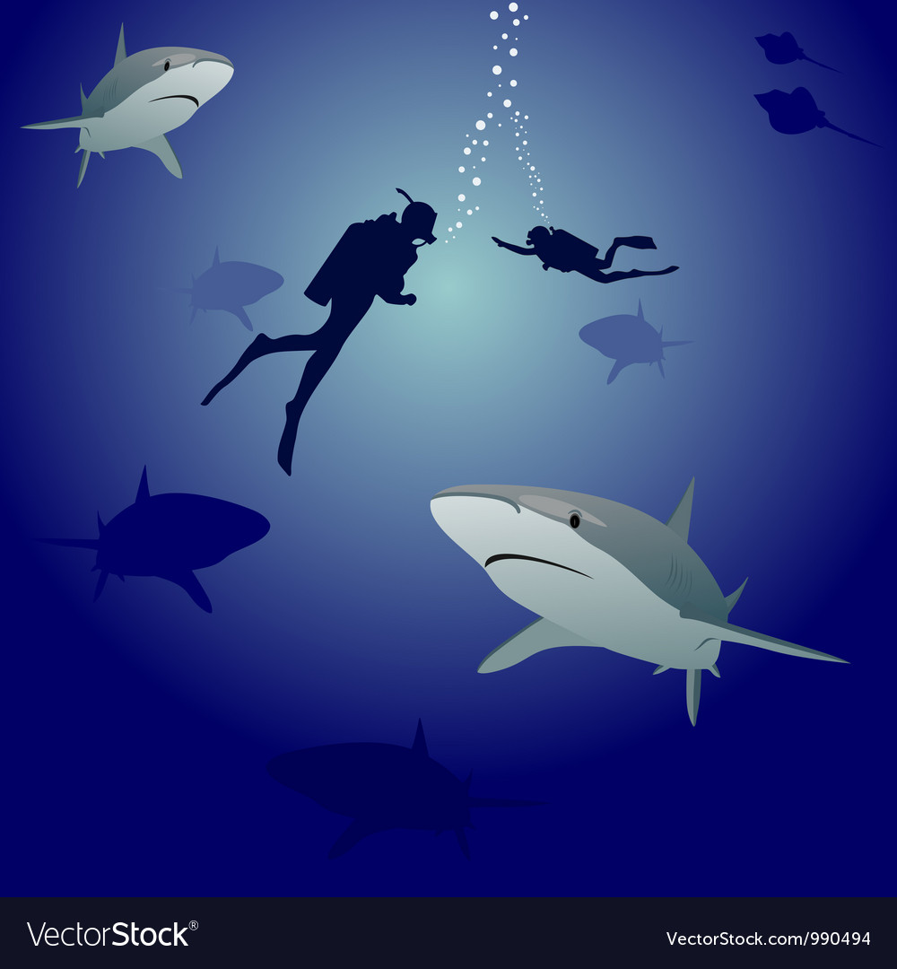 Sharks and scuba divers vector