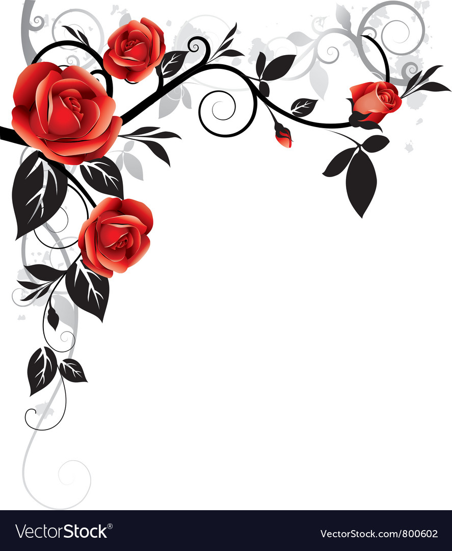 Ornament with roses vector