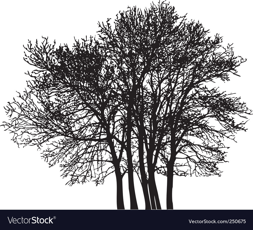 Group tree vector