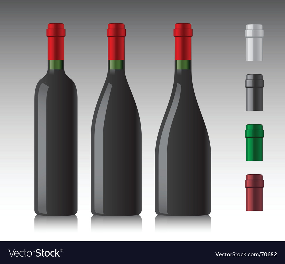 Wine bottles vector