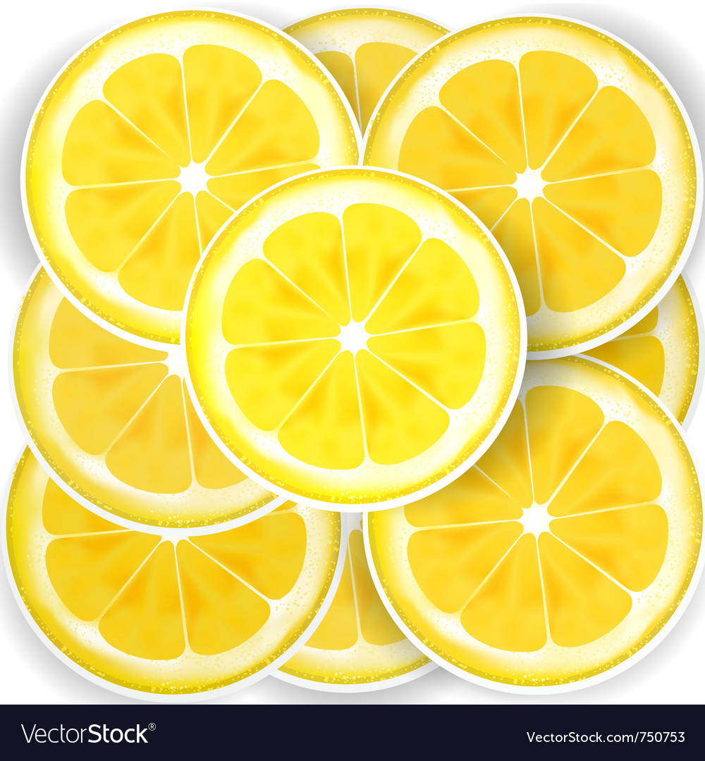 Lemon slices vector by bigfatnapoleon image 750753 vectorstock