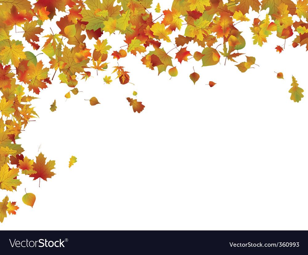 Фон осень листва