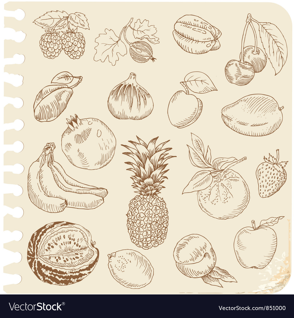 Set of doodle fruits vector