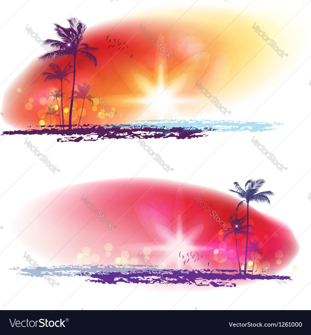 Sunset and palm tree vector