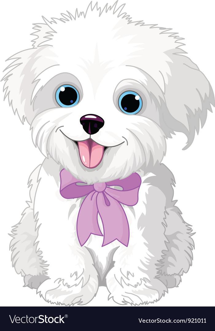White lap-dog vector