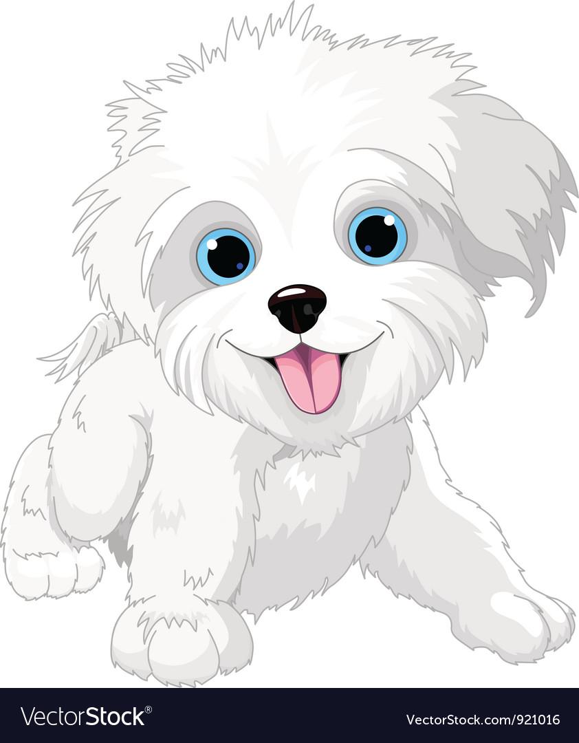 Playful lap-dog vector