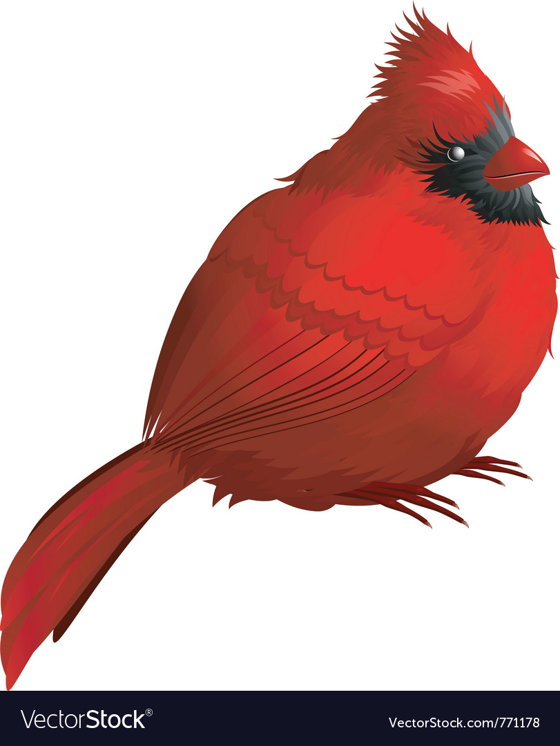 Robin character vector