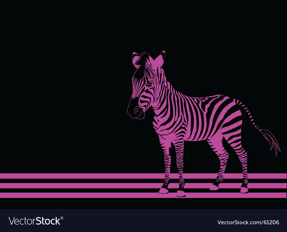 Zebra pink vector