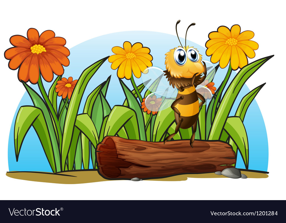 A bee above a trunk vector