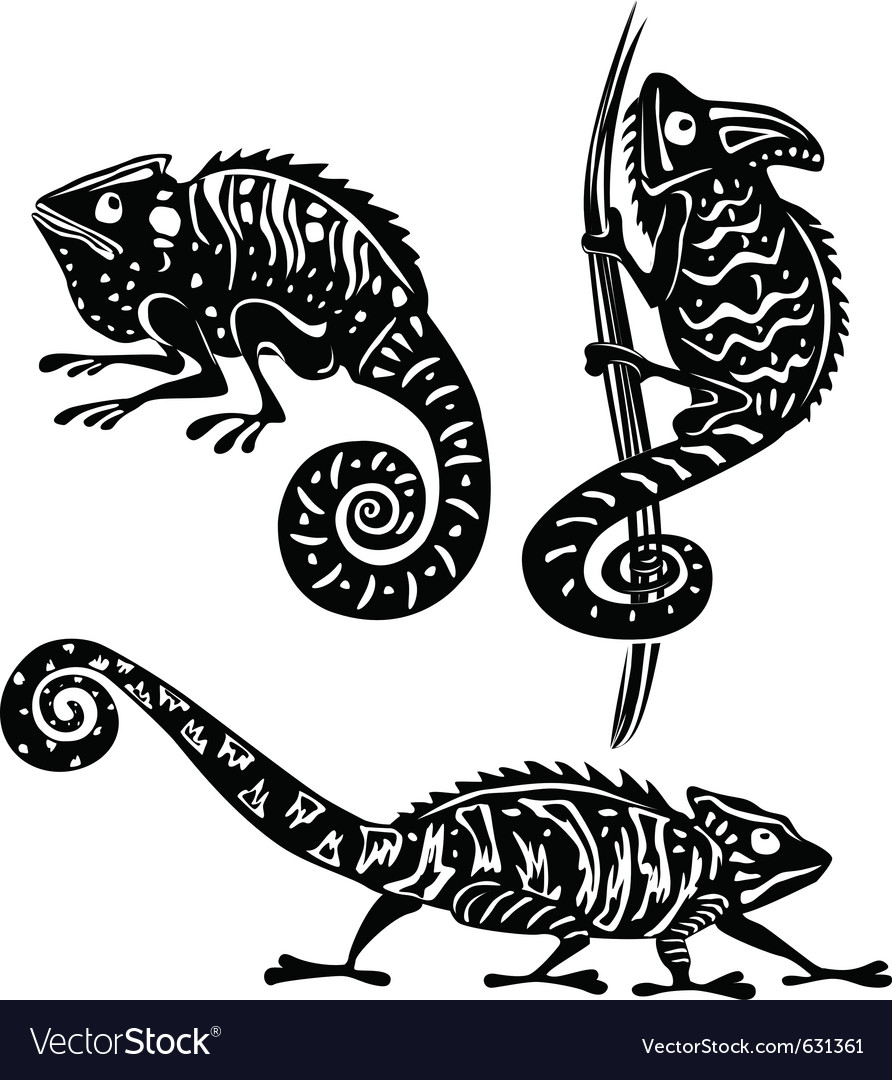 Black and white chameleon vector