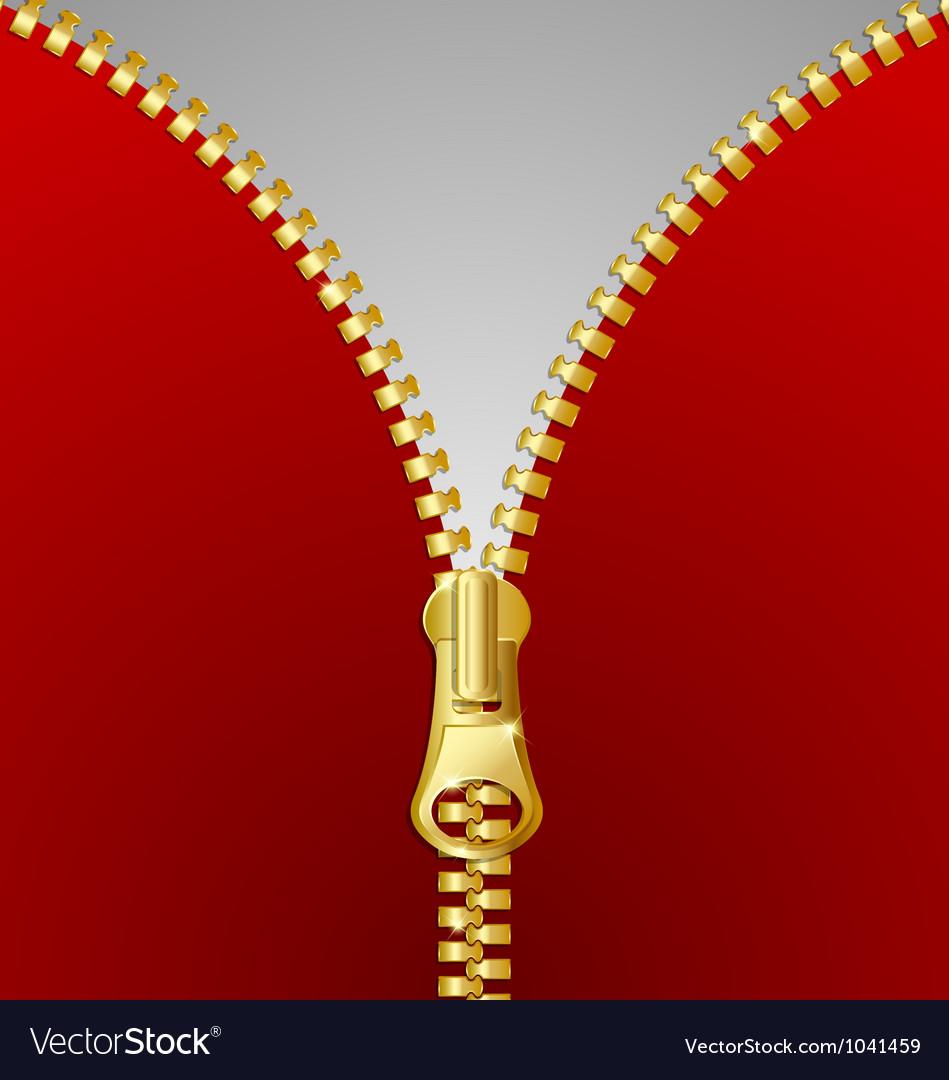 Metallic zipper vector