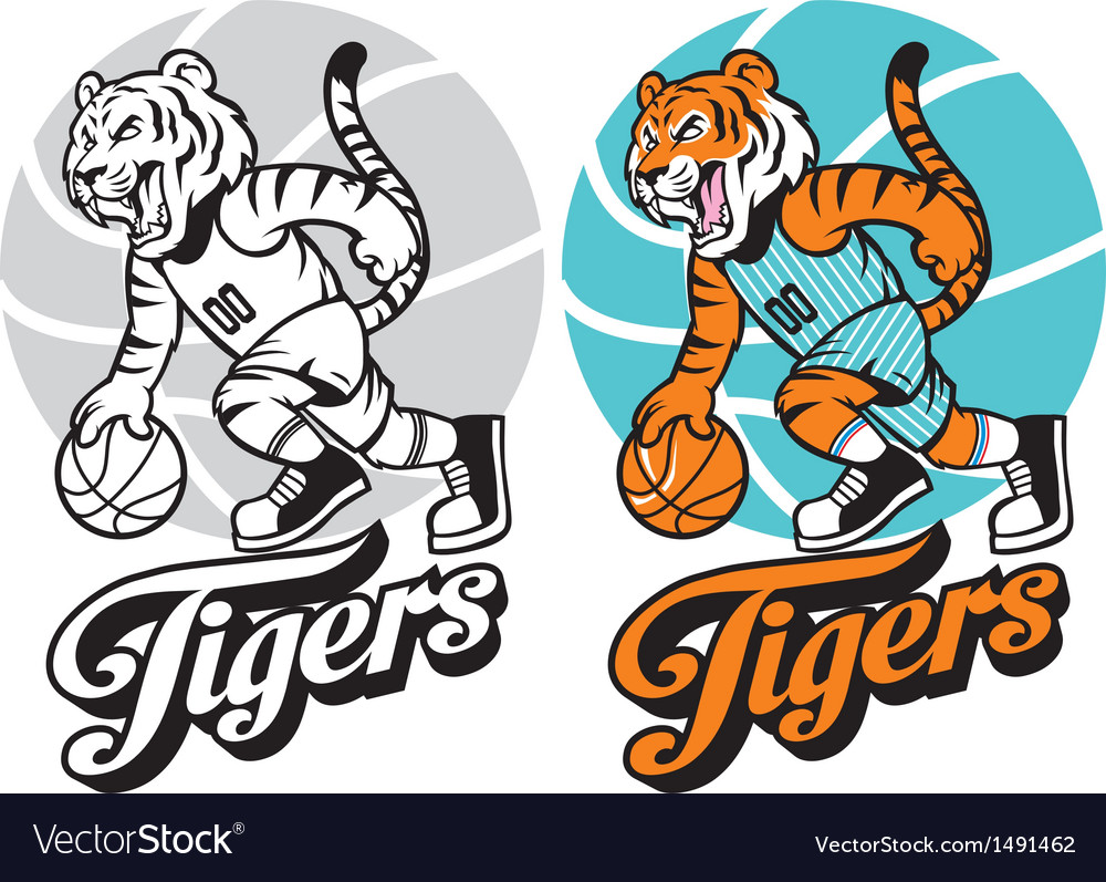 Tiger basketball mascot vector