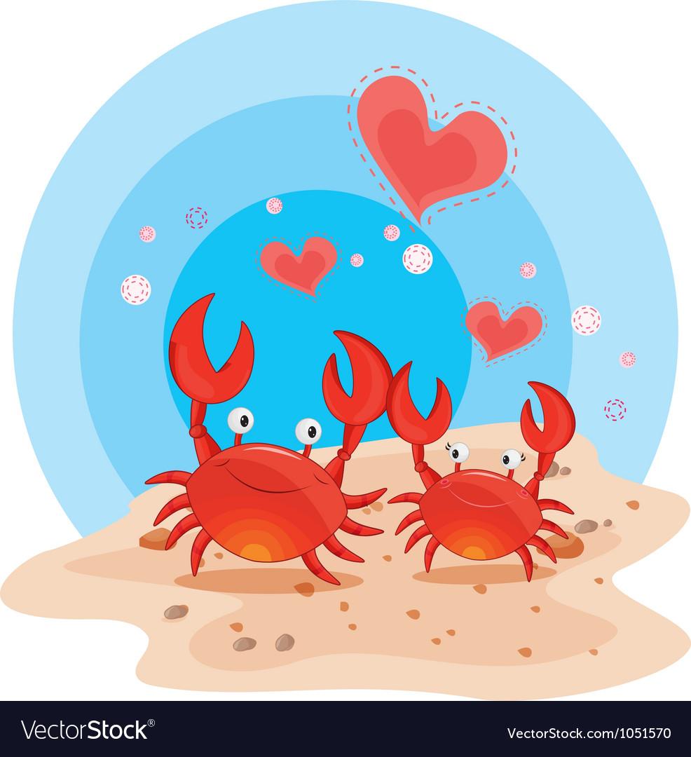 Crabs on beach vector