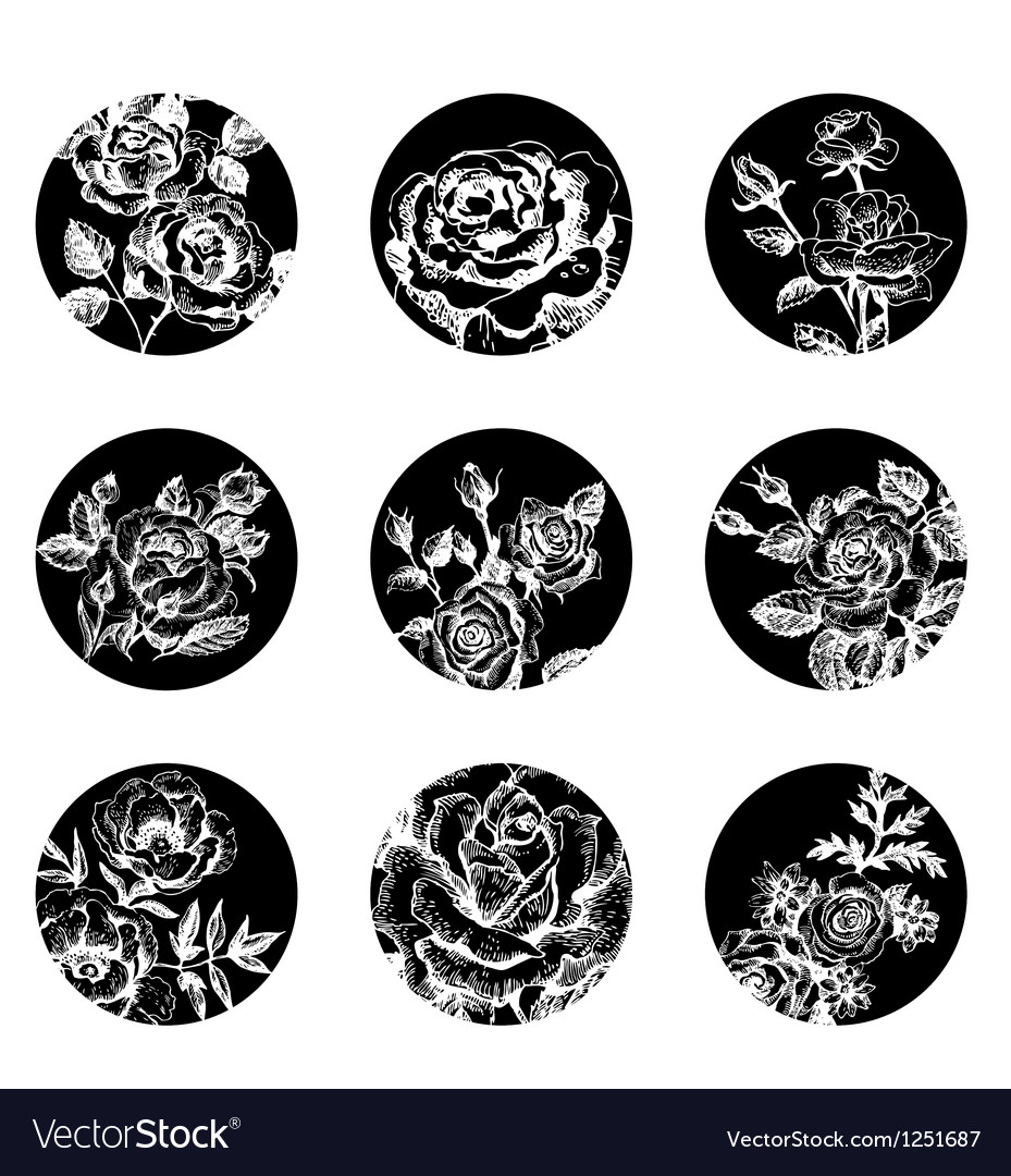 Set of floral banners hand drawn rose vector