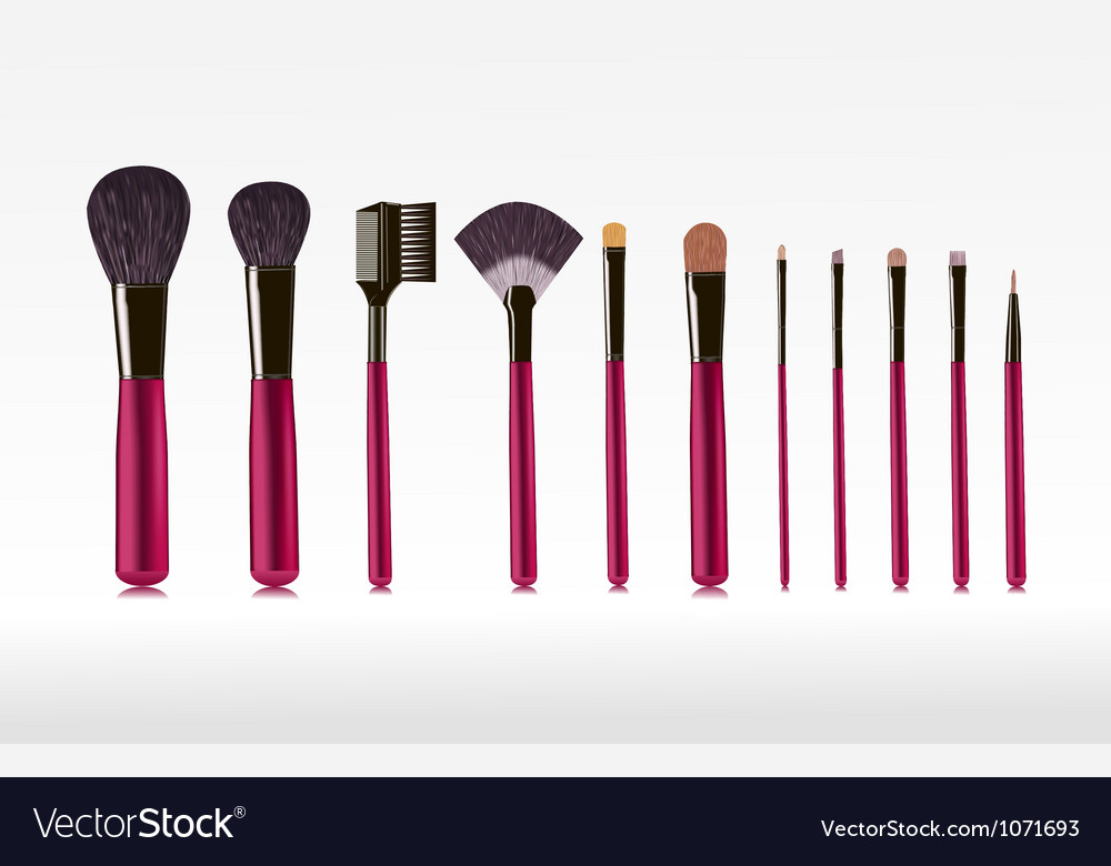 Makeup bushes set vector