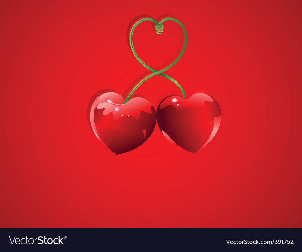Valentine cherry love vector