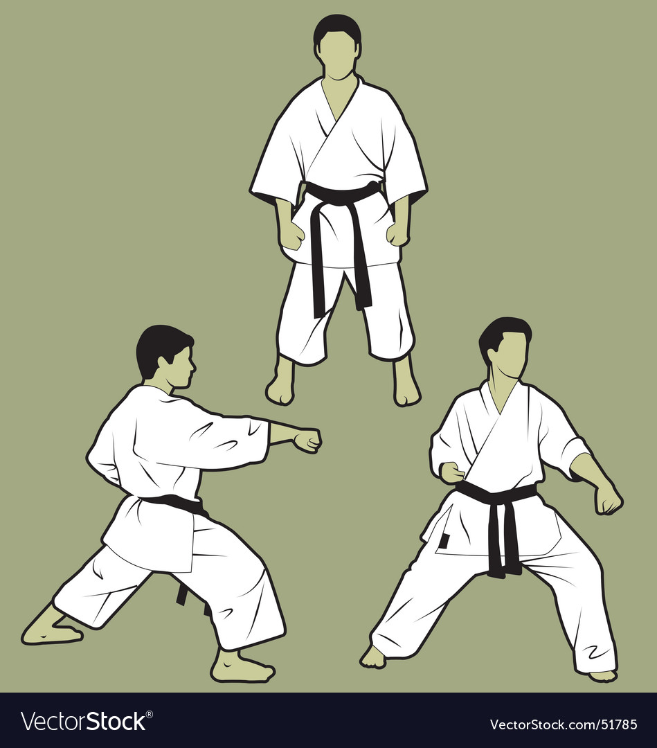 Karate vector