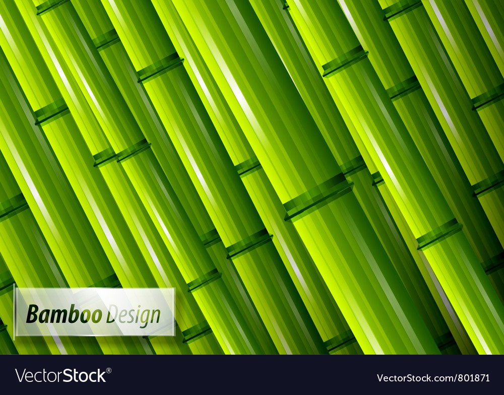 Green bamboo background vector