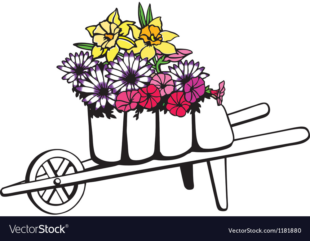 Wheelbarrow full of flowers vector