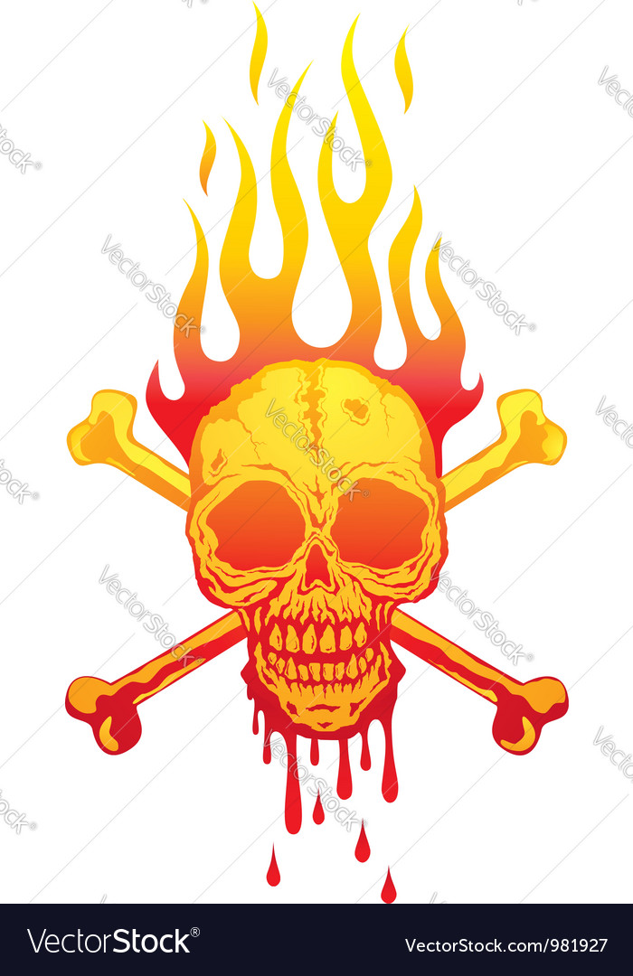Skull fire white vector
