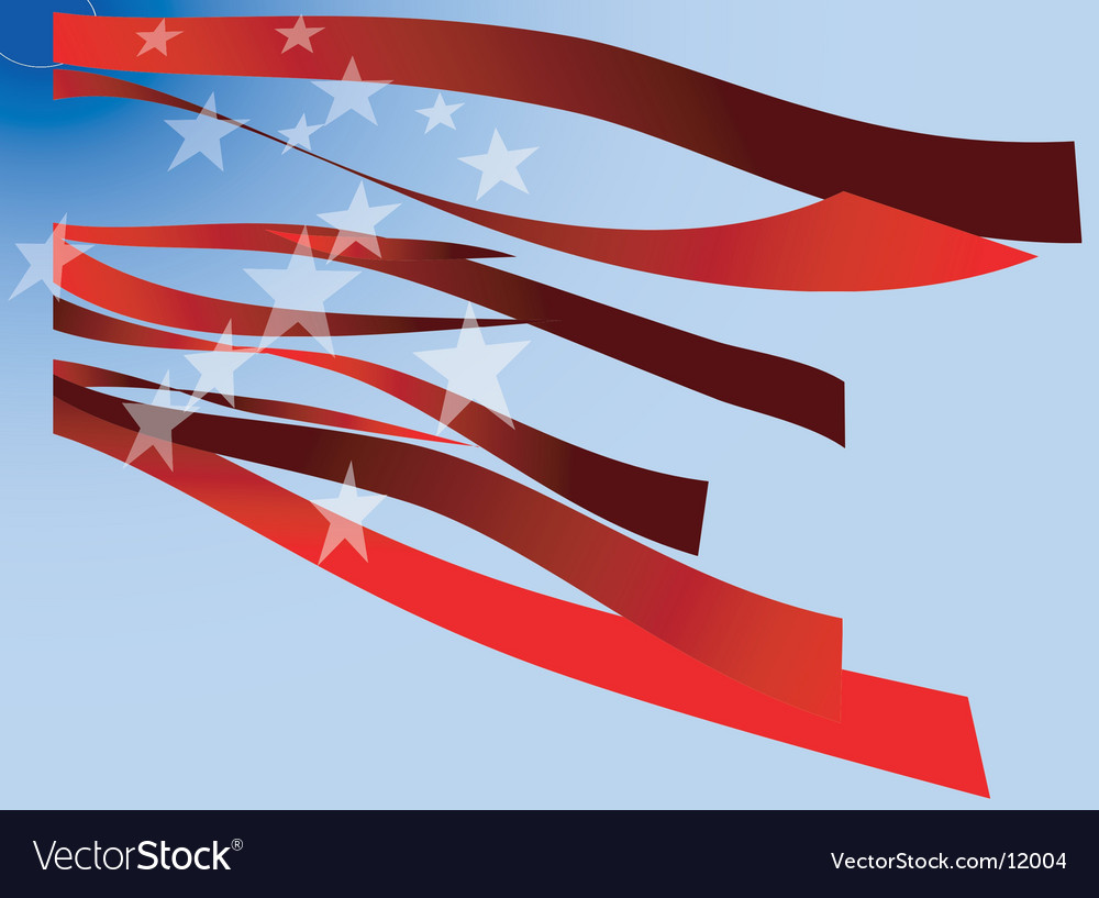 Usa flag stripes and stars vector