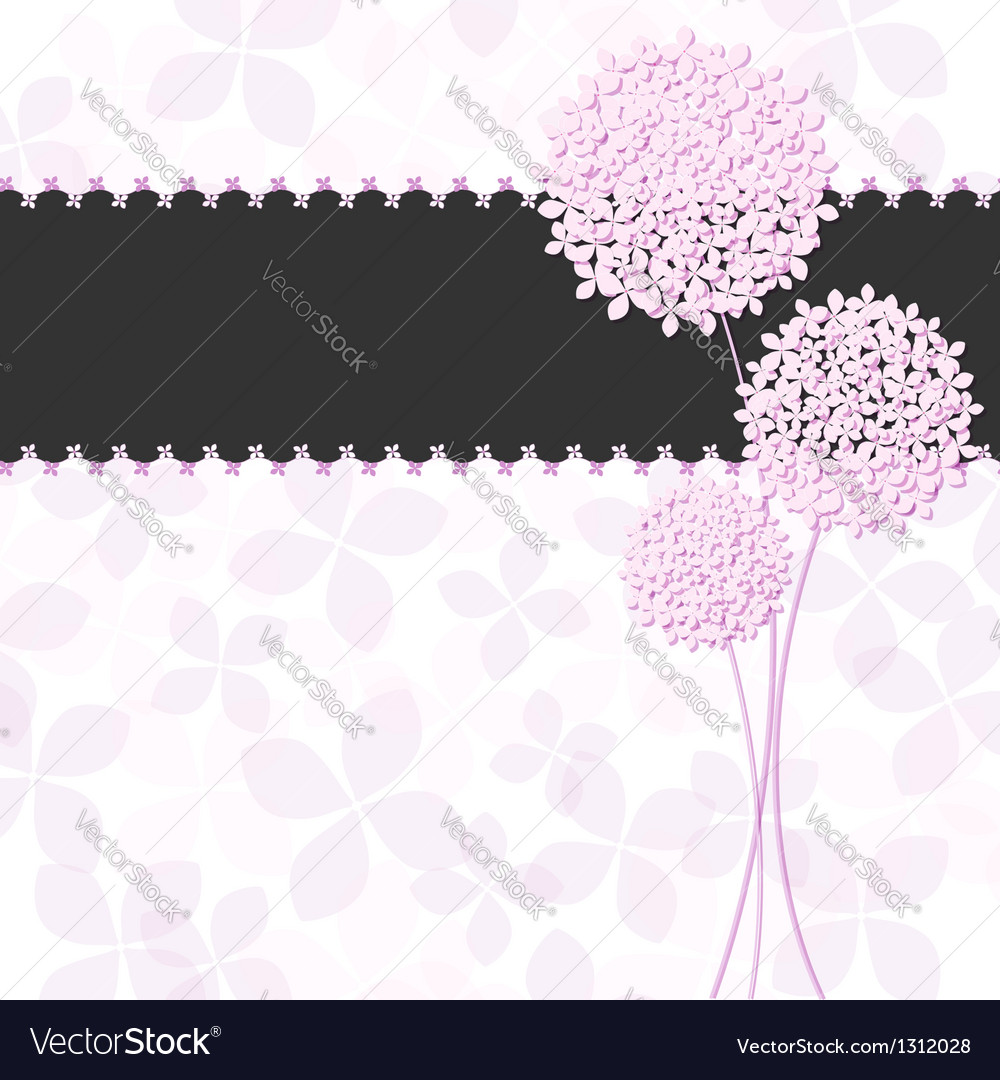 Springtime pink purple hydrangea flower vector