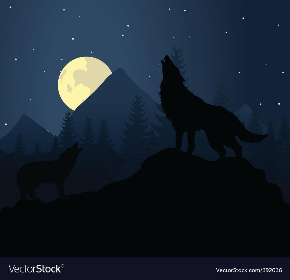 Night wolf vector