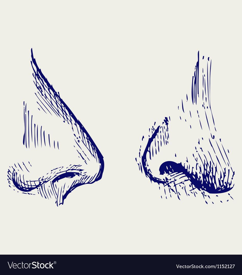 Nose vector