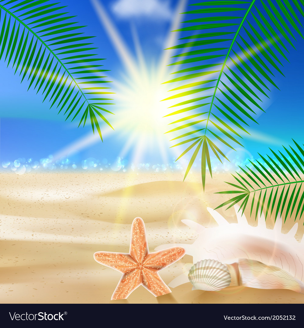 Creative graphic summer design vector