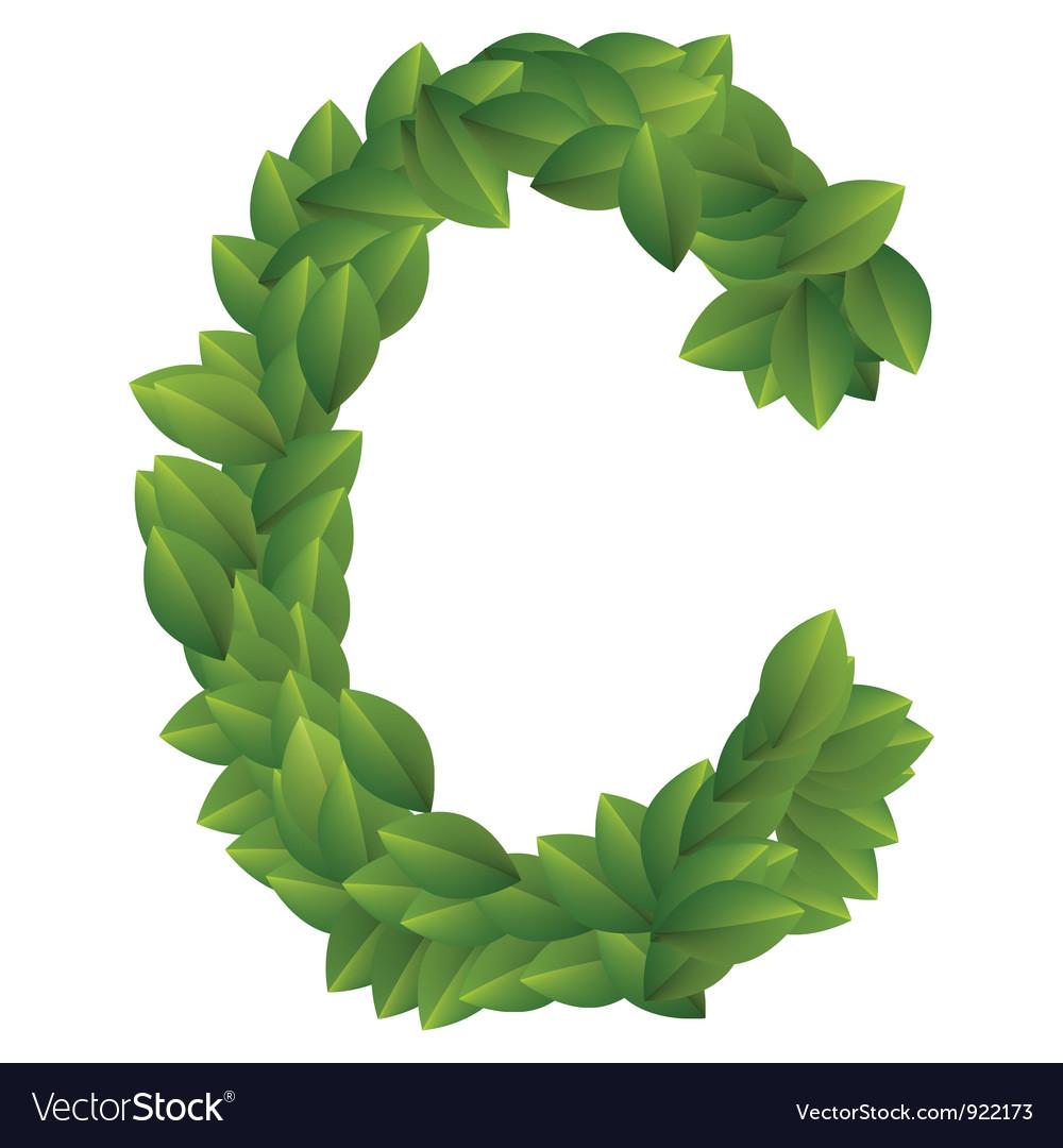 Letter c of green leaves  C Letter Alphabet