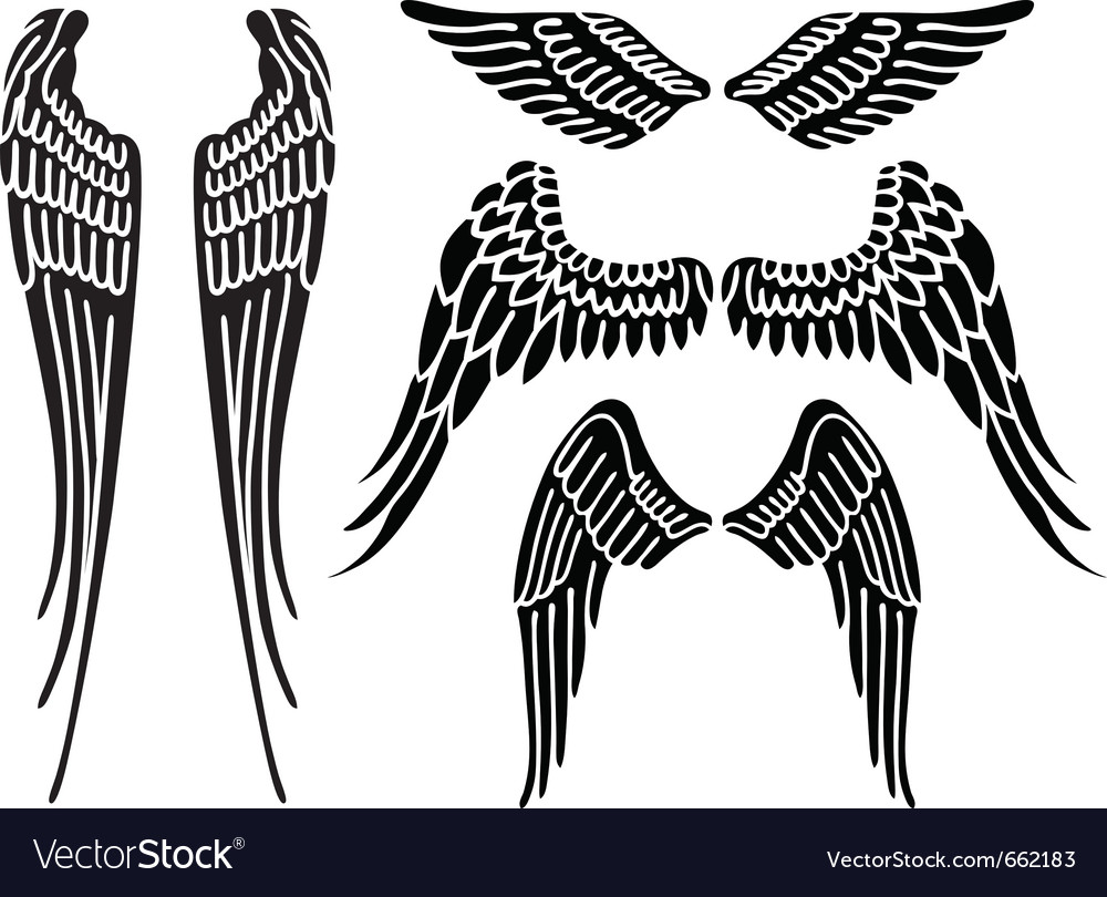 Angel wings vector