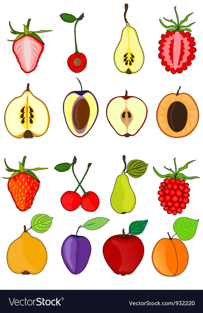 Set of fruits vector