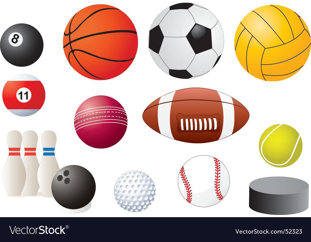 Sport equipment vector