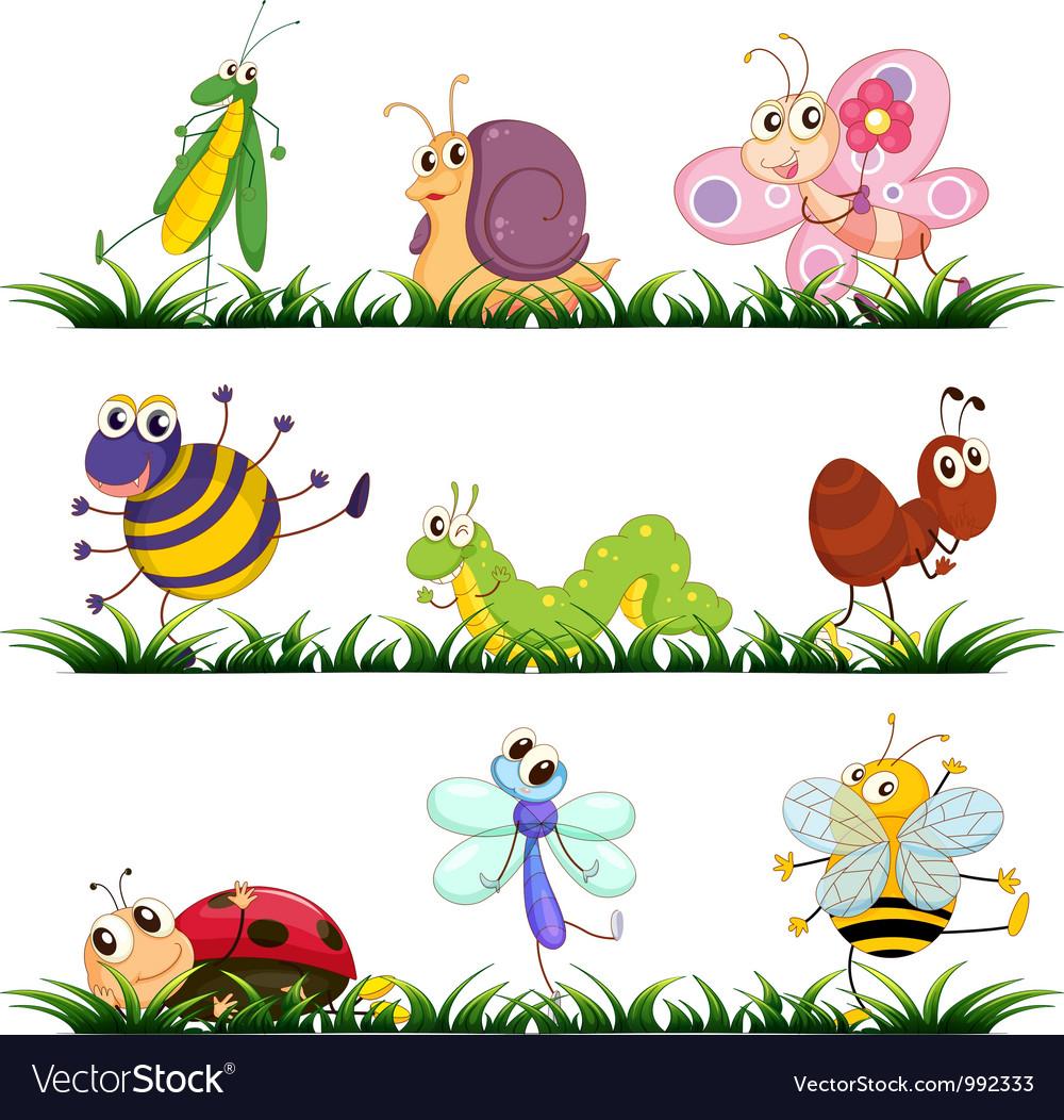 Bugs cartoon vector
